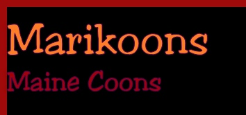 Marikoons 
